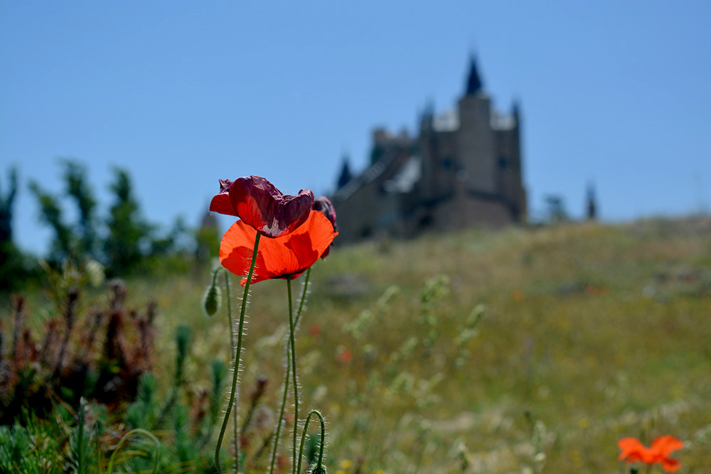 Un paseo alternativo por Segovia - Be There Before 47